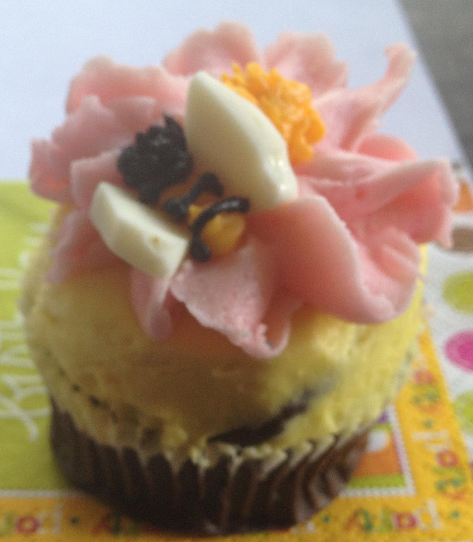 Second City Cupcake Tour